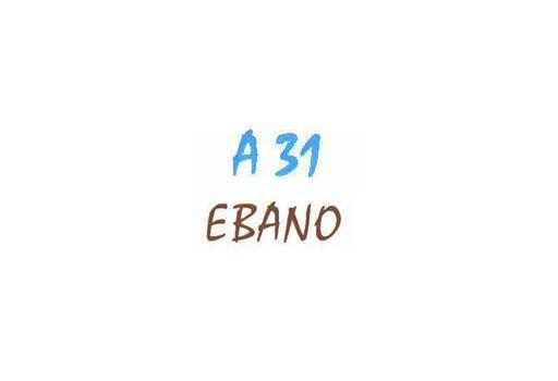 Mayorista Actividades A-31 - Ebano